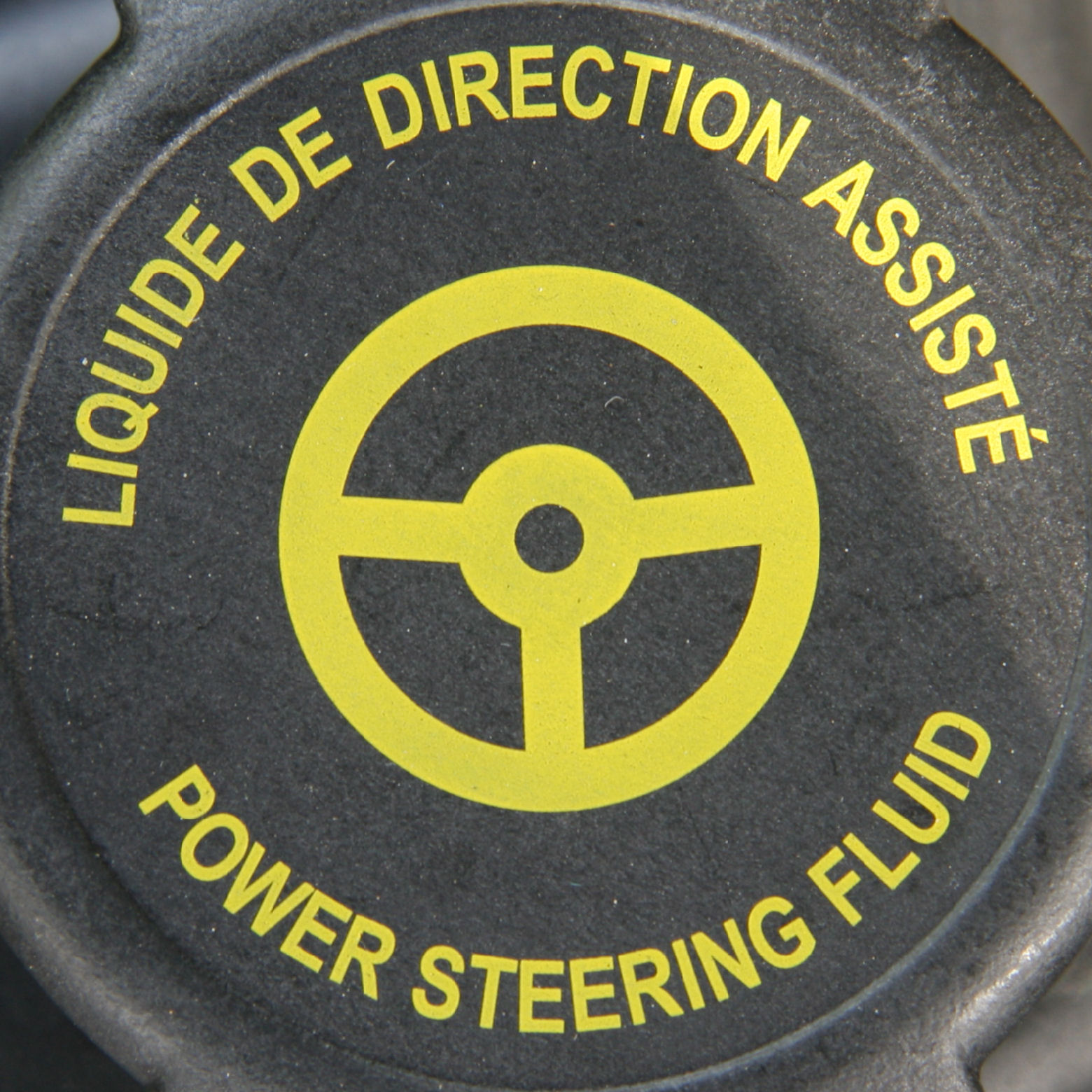 Check Power Steering Fluid Driving Lessons Kerry